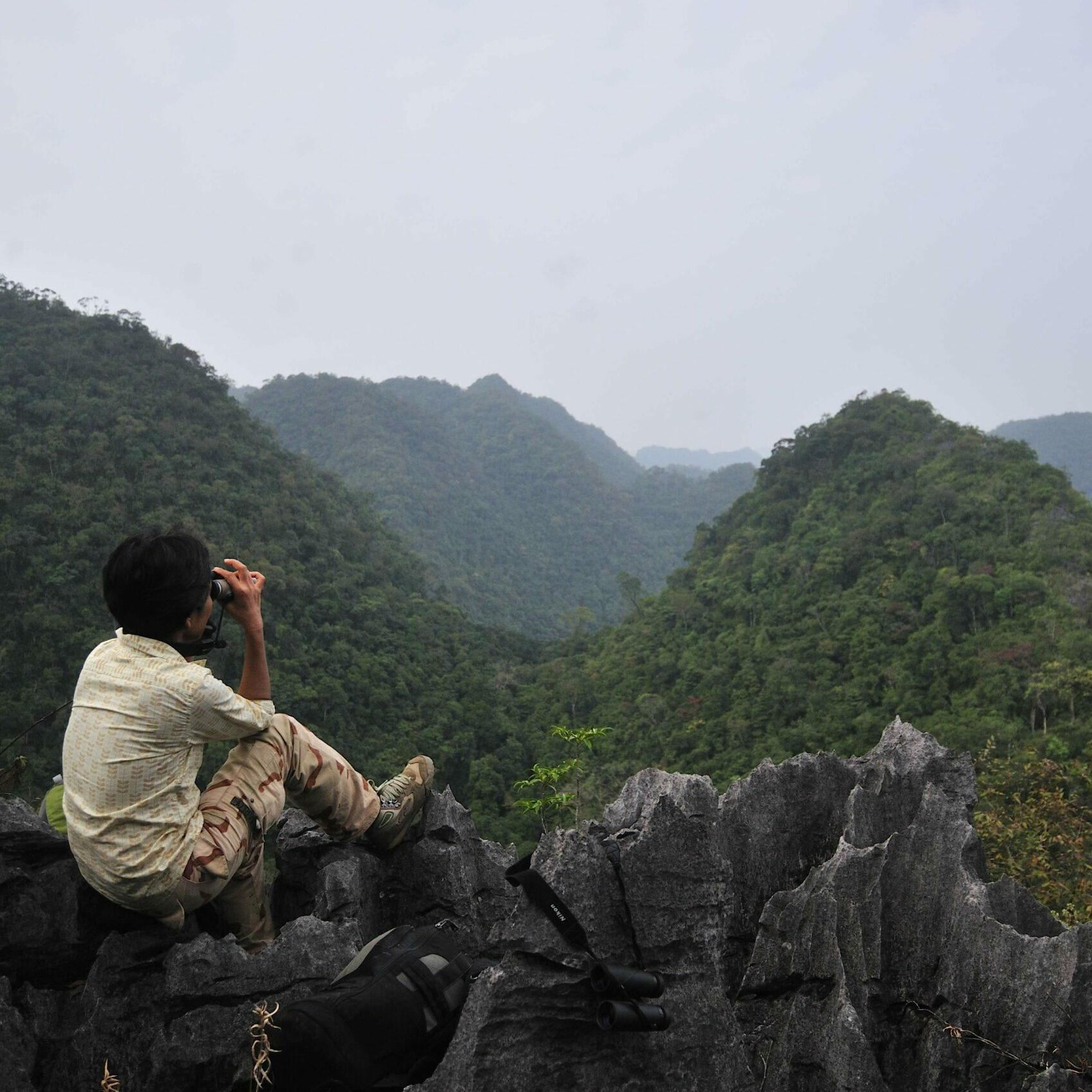Monitoring gibbons in Asia