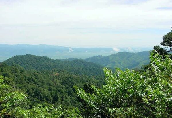 The project aimed to promote community-based ecotourism to Sierra Caral - the largest intact remnant of rainforest in the region