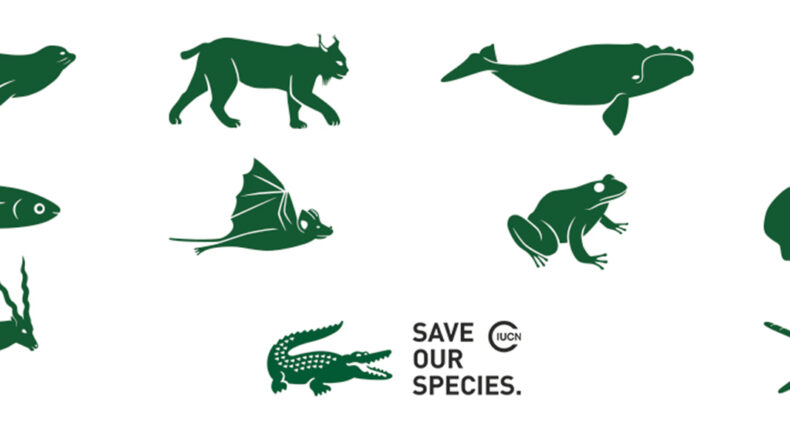 Lacoste for Save Our Species 2019
