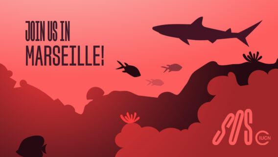 IUCN Save Our Species is going to Marseille